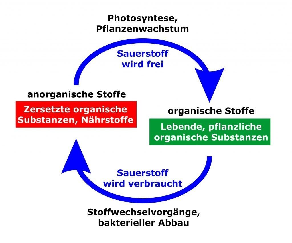 Grafik Nährstoffumsatz 3