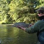 WRRL Befischung 1