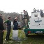 Anlieferung der Besatzfische