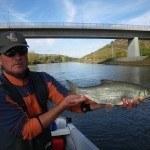 WRRL Befischung 39