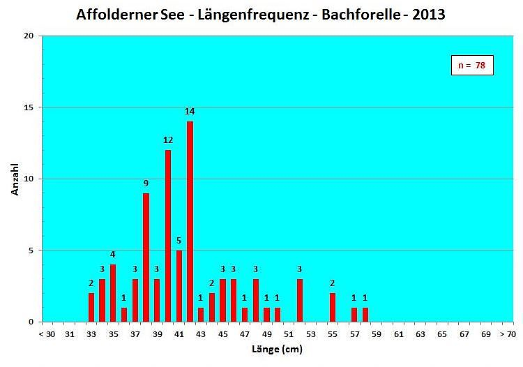 Längenfrequenzdiagramm Bachforelle 2013