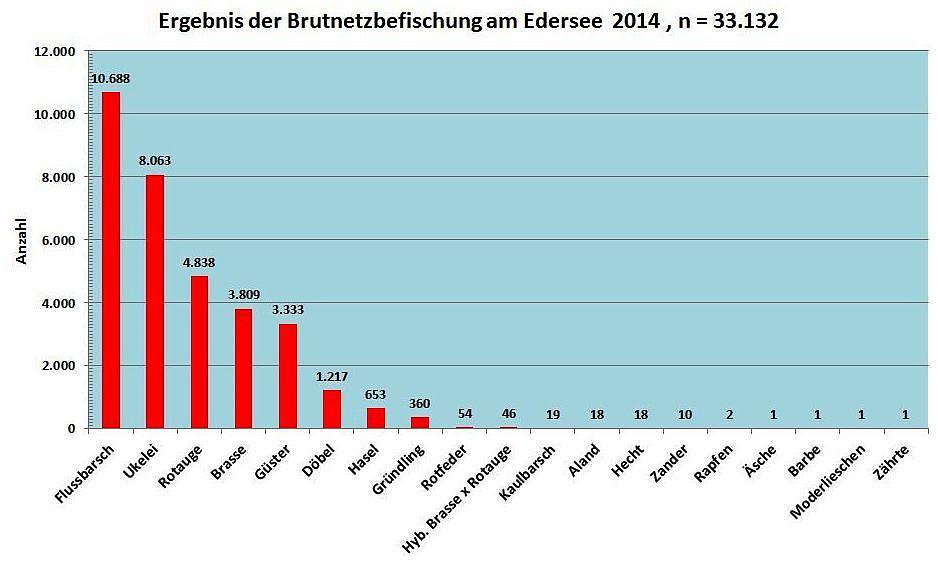 Ergebnis BNF 2014