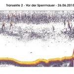 Transekte II - Vor der Spermauer - 24.06.15