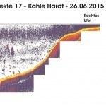 Transekte XVI - Kahle Hardt - 24.06.15