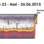Transekte XXIII - Asel - 24.06.15