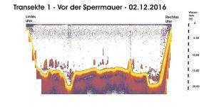 transekte-1-vor-der-sperrmauer-02-12-16