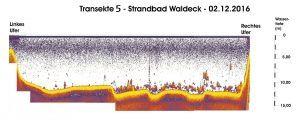transekte-5-strandbad-waldeck-02-12-16